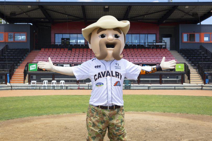 Canberra Cavalry mascot Sarge at the Narrabundah baseball ballpark